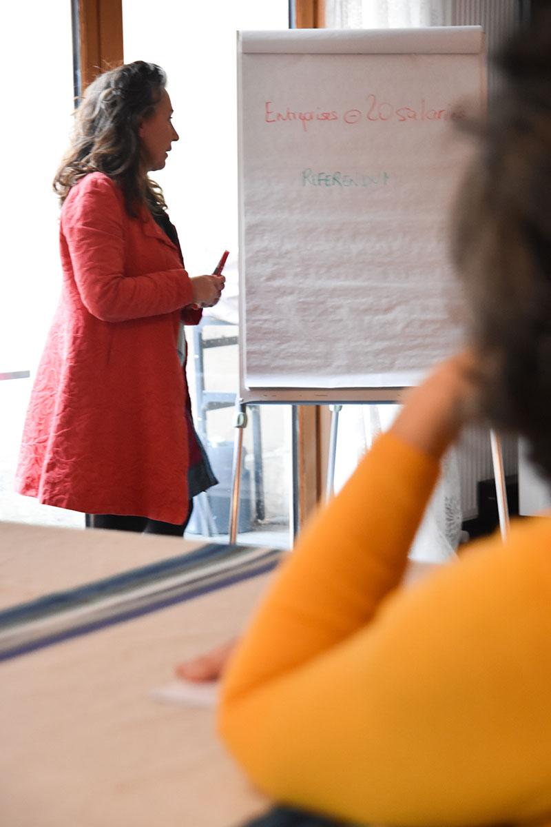 Formation en droit social du travail et CSE à Bordeaux